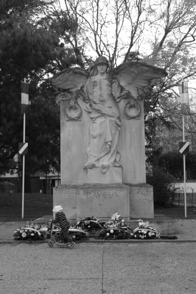 Serge-Philippe-Lecourt-2015-11-11-Bayeux-monument-aux-morts-34