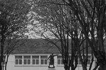 SP Lecourt-2015-05-Tourlaville MAM et cimetière-31
