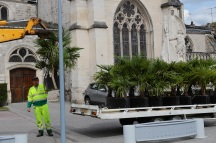 Serge-Philippe-Lecourt-2016-Monument-aux-morts-Pavilly-Alphonse-Guilloux-76-62