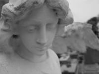 Serge-Philippe-Lecourt-2015-05-monument-aux-morts-Montfarville (50)-39