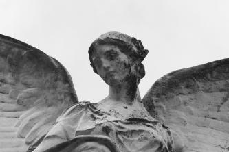 serge-philippe-lecourt-2016-monument-aux-morts-elbeuf-76-19