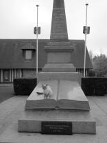 serge-philippe-lecourt-2016-monument-aux-morts-touques-14-6