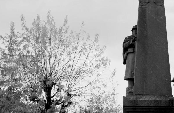 serge-philippe-lecourt-2016-monument-aux-morts-messei-61