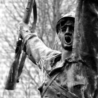 serge-philippe-lecourt-2016-12-monument-aux-morts-saint-lo-gele-2