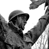 serge-philippe-lecourt-2016-12-monument-aux-morts-saint-lo-gele-4