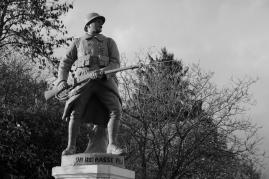 serge-philippe-lecourt-2016-monument-aux-morts-la-sauvagere-61-29