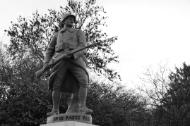 serge-philippe-lecourt-2016-monument-aux-morts-la-sauvagere-61-7